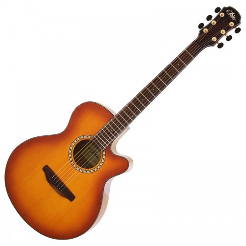 Chitarra Acustica Aria TG-01 LVS