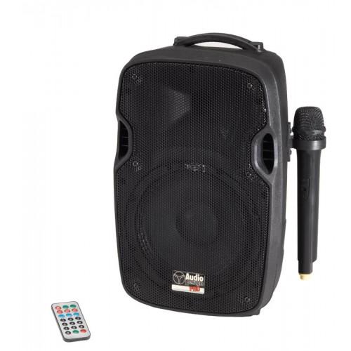 Audio Design Pax1 12W/L